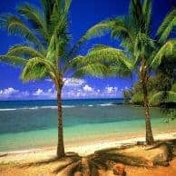 Cayman vacation rentals
