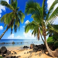 hawaii holidays booking rent holiday
